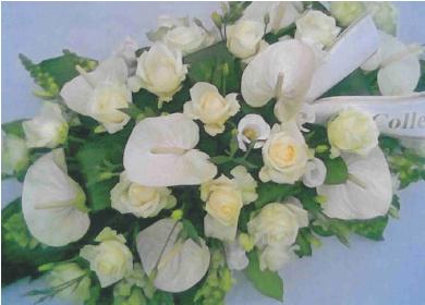 wittebloemen2.png